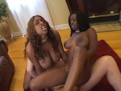 White guy gets wild with two black hotties movies at sgirls.net