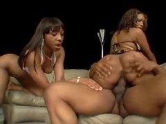 Tremendous black asses on these fuck sluts videos