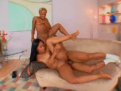 Two curvy small tits black girls nailed by fat dick tubes