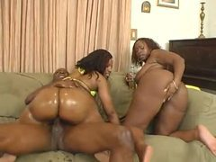 Fucking two hot black bitches in their asses videos