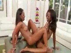 Pussy licking black ladies love the hot box movies at sgirls.net