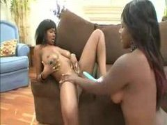 Chubby black chicks get into a 69 and eat pussy videos