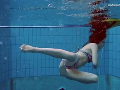 Underwater with a bikini girl stripping in the pool movies at find-best-tits.com