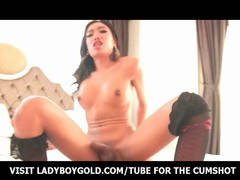 Ladyboy mos sweet eyes and a body bareback movies at kilotop.com