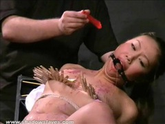 Asian bdsm of slave tigerr benson tubes at asian.sgirls.net