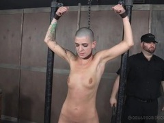 Shaved head girl flogged hard in the dungeon movies at dailyadult.info