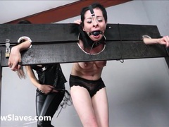 Merciless brazilian bdsm movies at sgirls.net