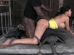 Big ass sheila marie fucked from behind movies at sgirls.net