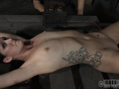 Tall skinny slut spread wide in a torture device videos