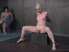 Beautiful tied up girl flogged across her tits videos
