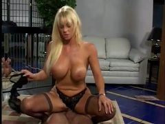 Panty and stockings sex with a slutty milf movies at sgirls.net